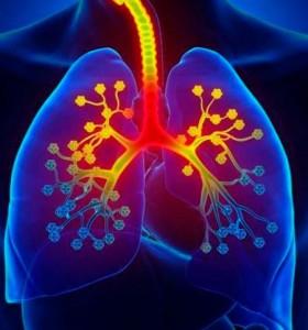 Principales enemigos de la salud respiratoria